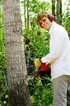 This is a picture of a tree specialist.